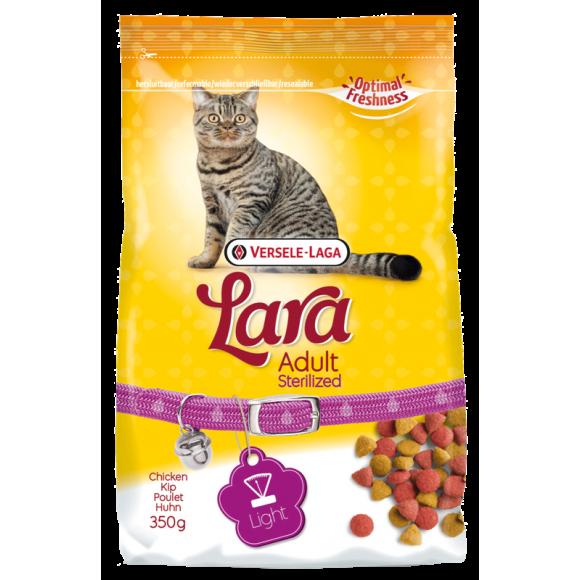 Acer palm. crispum